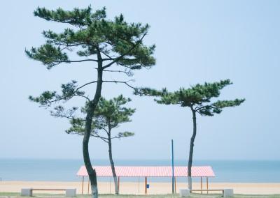A Breath of Sea Air, Weihai