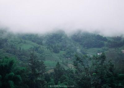 The mist-3