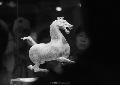 The Flying Horse of Gansu 銅奔馬